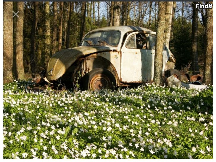 Köpes Skrotbilar/traktorer/jordbruksmaskiner
